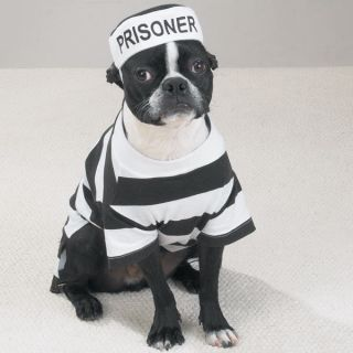Dog Puppy Pet Halloween Costume Prison Pooch Coat Jacket Clothing