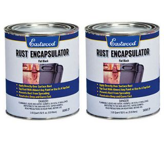 Eastwood Rust Encapsulator Paint Flat Black 2 Quarts