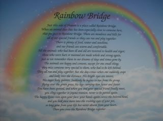 RAINBOW BRIDGE MEMORIAL POEM FOR LOSS OF BELOVED PET