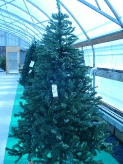 Artificial pre lit Christmas Tree NIB 7 Noble Fir CLEAR NIB