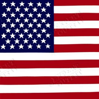 Head Bandana United States USA American Flag Bandanna New Wholesale
