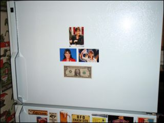Refrigerator Magnets Sarah Palin Set A Set of 3 Cool Sexy Fun