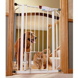 Carlson Extra Tall Walk Through Pet Gate