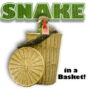 Snake Basket Magic Trick Stage Illusion Kids Card Frontier
