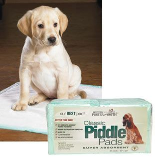 house training piddle pads extra absorbent super large pack of 60