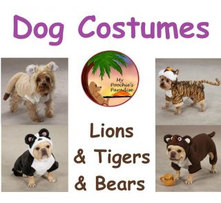 Lions Tigers Bears Oh My Halloween Dog Costumes
