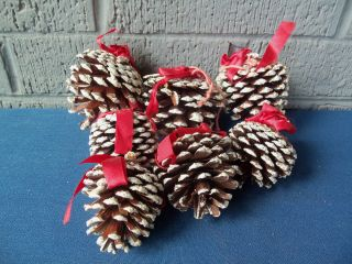 Vintage Real Pine Cone Ornaments 7 Frosted Glitter So Cute