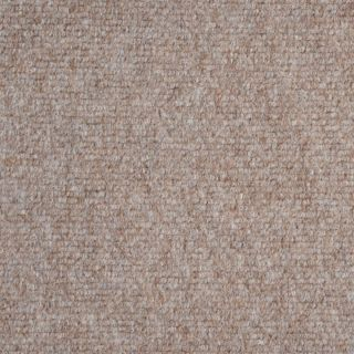 Indoor Outdoor Beige Area Rug Carpet 6x8 with Marine Backing