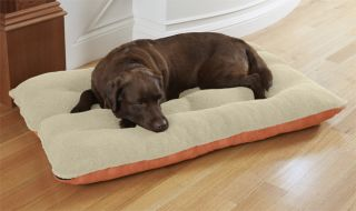 Memory Foam Futon Dog Bed / Large Dogs 70 100 Lbs., Terracotta,
